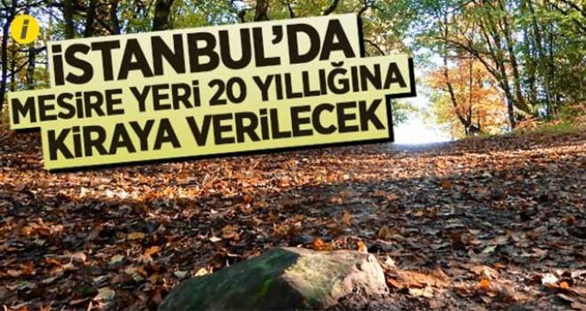 İSTANBUL'DA MESİRE YERİ 20 YILLIĞINA KİRAYA VERİLECEK