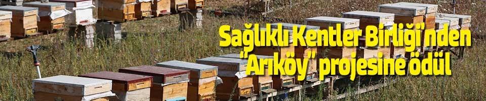 """SAĞLIKLI KENTLER BİRLİĞİ'NDEN """"ARIKÖY"""" PROJESİNE ÖDÜL"""